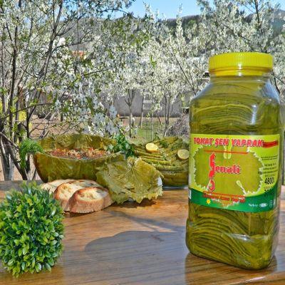 1 adet 4800 gr Bidonda Salamura Tokat Bağ Yaprağı